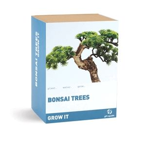 Grow It: Bonsai (Entrega em 24h)