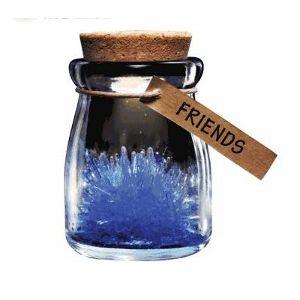 Jardim de Cristais Azul - Amizade (Entrega em 24h)