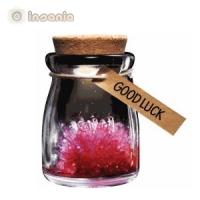 jardim de cristais, boa sorte, mae_flores, Amigo secreto