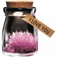 Para ela, top10ela, 08022013, 06032013, primavera, mae flores, Ar Livre Primavera, Para M�e