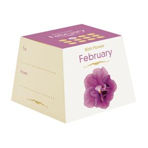 Flores de Aniversário - Fevereiro (Entrega em 24h)