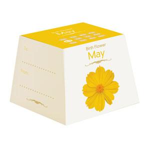 Flores de Aniversário - Maio (Entrega em 24h)