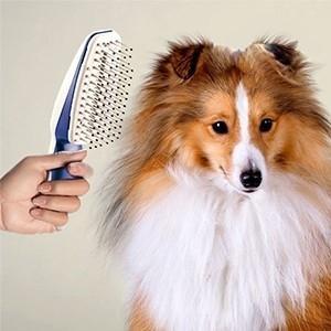 Escova Iónica My Pet Groom (Entrega em 24h)