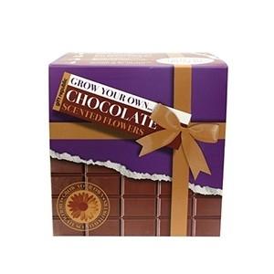Semeia e Vê Crescer: Chocolate (Entrega em 24h)