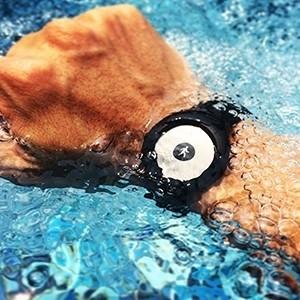 Relógio de Atividade Física Nokia Go Preto (Entrega em 24h)
